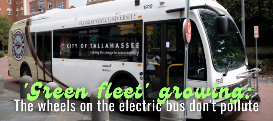 Seminole Express: Green Fleet Growing